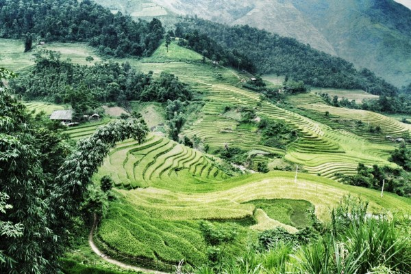 Discover The Hidden Gems Of Sapa