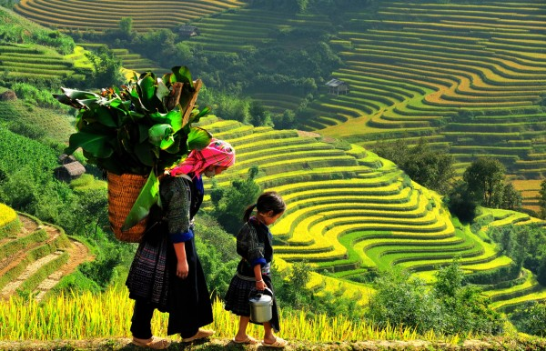 Discover the Northern of Vietnam