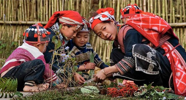 discover-the-hidden-gems-of-sapa